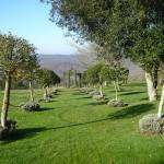 jardins manoir eyrignac - jardin champêtre