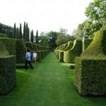 jardins manoir eyrignac - allees
