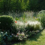 Jardins Albarede - plantes