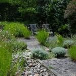 Jardins Albarede - aromatiques