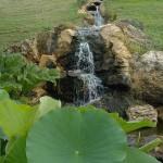 Cascade - Jardins d'eau