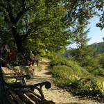 Parcours ombrage - Jardins d'eau