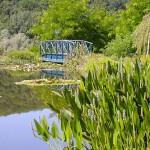 Pont - Jardins d'eau