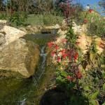 Roche - Jardins d'eau