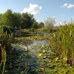 Vue - Jardins d'eau