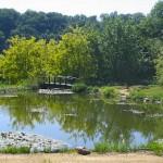 Vue d'ensemble - Jardins d'eau