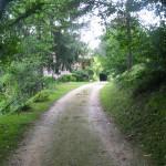 chemin - Auberge Layotte